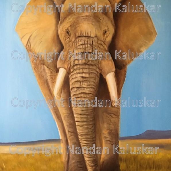 Elephant Copyright Nandan